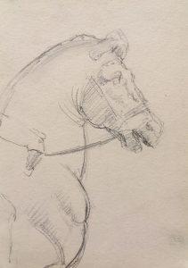 esmond Mac Mahon - Fine artist - London - Equestrian art - Horse drawing