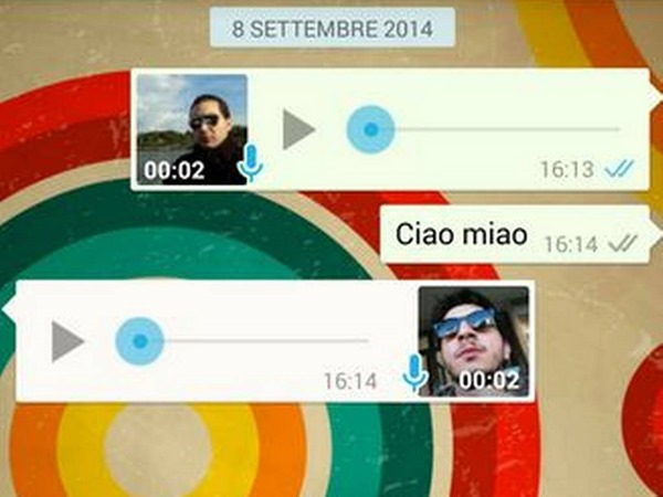 tick azul whatsapp