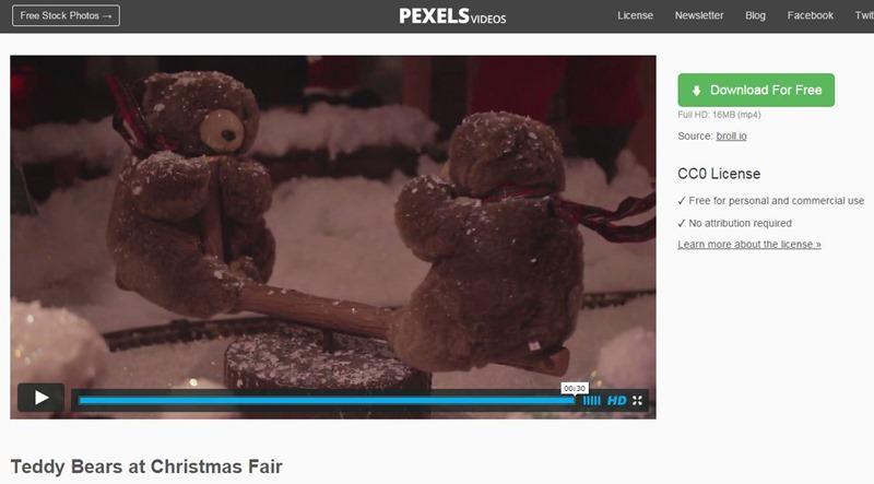 pexels teddy