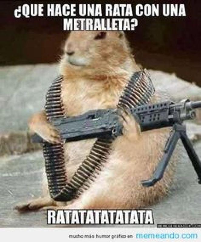 memes-whatsapp-de-animales-1