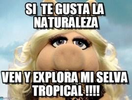 memes-whatsapp-de-animales-34