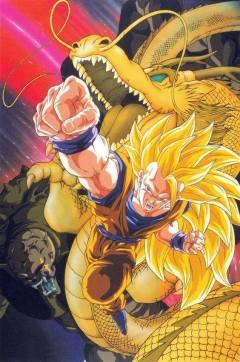 Dragon Ball fondos movil (14)