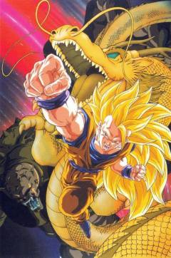 Dragon Ball fondos movil (14)
