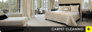 Professional Carpet Cleaning Information You Can Use