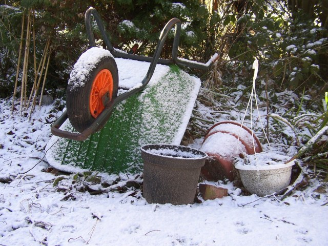 Common Problems You May Face In The Garden After Winter (And Ways To Fix Them!)