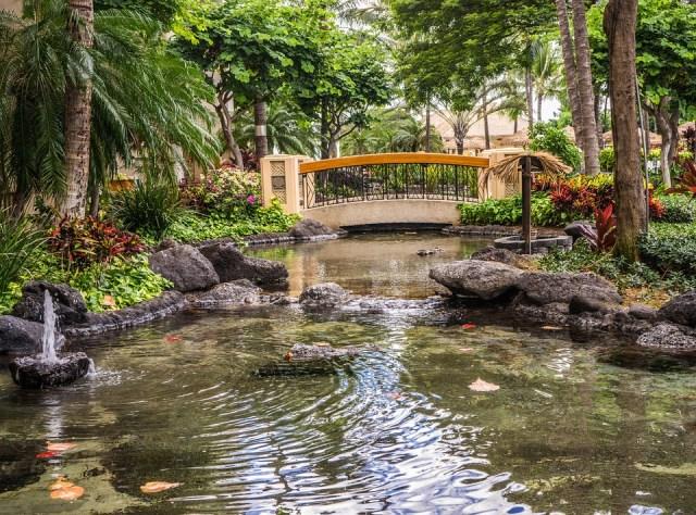 pond-resort-1008326_960_720