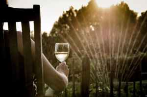 4 Super Home-Safety Garden Tips