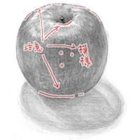 02.りんごのデッサン