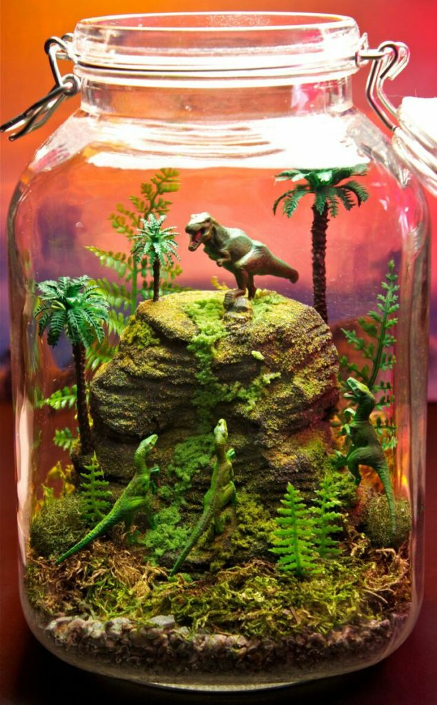 terrarium avec jouet dinosaure