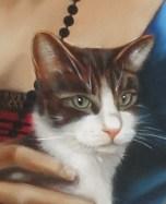 tête de chat, peinture, detail