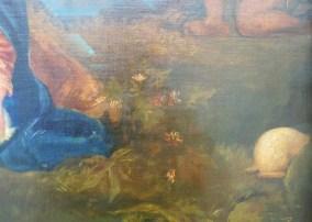 detail de la vegetation
