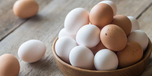 How-Egg-Is-Good-for-us-and-How-Many-Eggs-We-Should-Have-in-A-Day