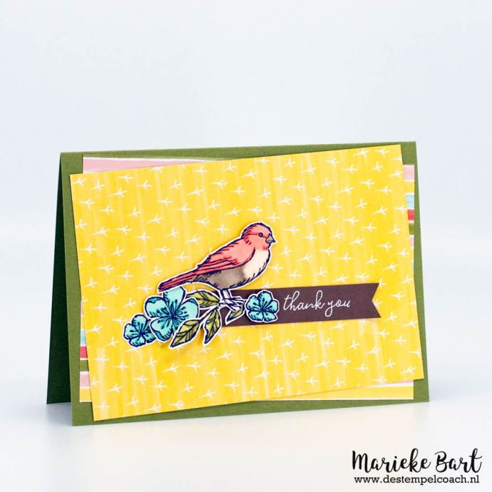 Stampin' Up Free as a Bird Stamp Set and Bird Ballad Designer Series Paper