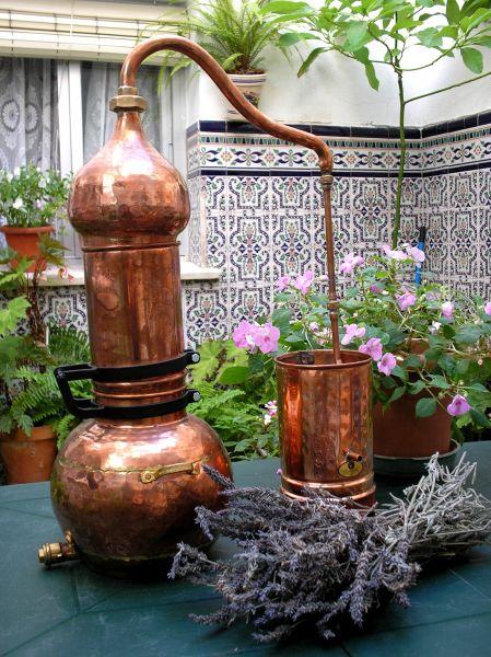 Resultado de imagen de alambic huiles essentielles