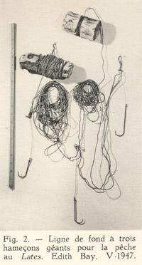 Pêche aux hameçons, pêche des Lates avec de fortes lignes.