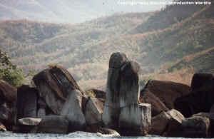 Zongwe island.