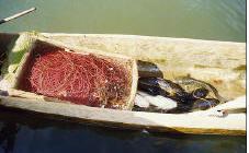 Pêche au savon, matériel de pêche au savon.