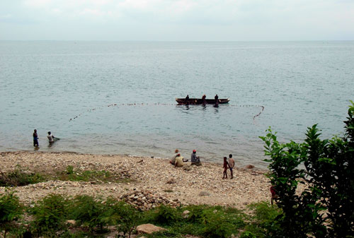 Pêche à la senne de plage, document Yves Fermon.