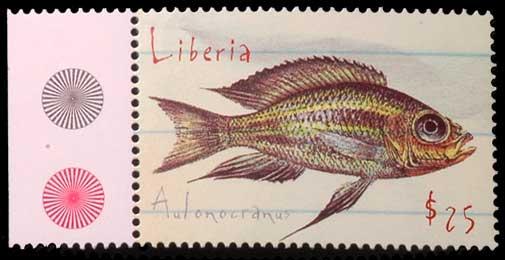 Aulonacranus, cichlidé, d'après la planche de description de Boulenger.