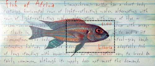 Timbre représentant Limnochromis auritus.