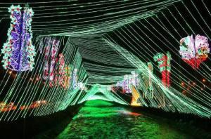 Illuminations de Nöel le long du fleuve Rio à Medellin, Colombie en décembre pendant les Fuente de Luz