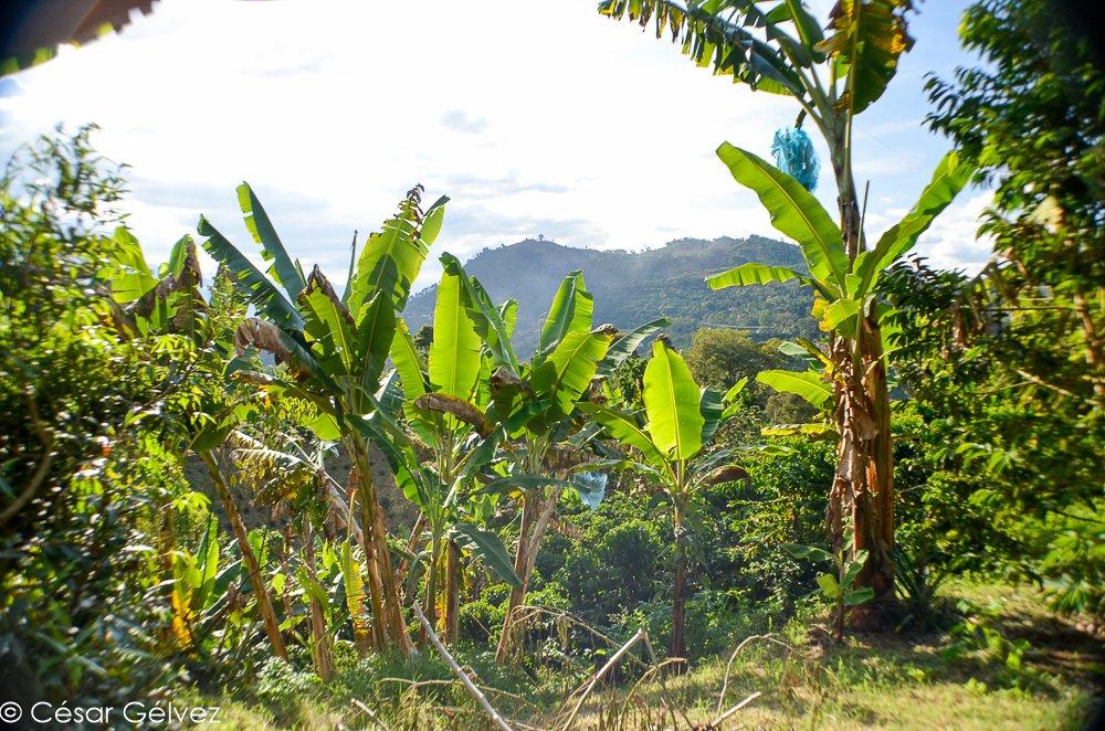 TOP 10 des endroits à visiter en Colombie
