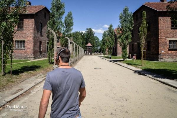 Sujet Auschwitz-11