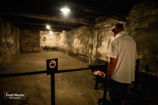 Sujet Auschwitz-13