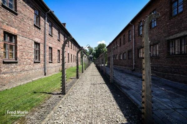Sujet Auschwitz-14