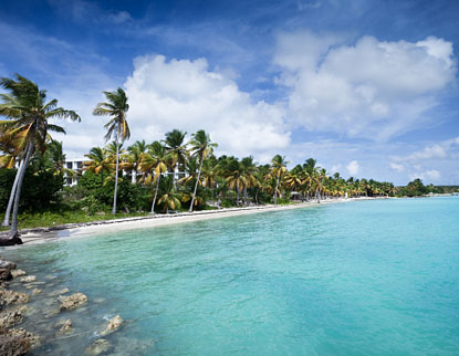 Guadeloupe Travel  France Antilles  Best Time to Go to