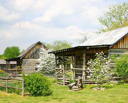 Arkansas Cabins  Cabin Rentals in Arkansas