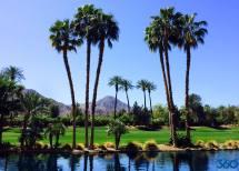 Palm Springs In
