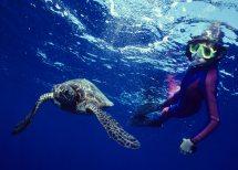 Kauai Diving Scuba Snorkeling