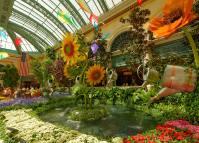 Bellagio Conservatory - Bellagio Garden