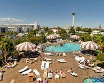 Circus Pool