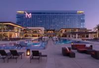 Pool Club at the M Resort