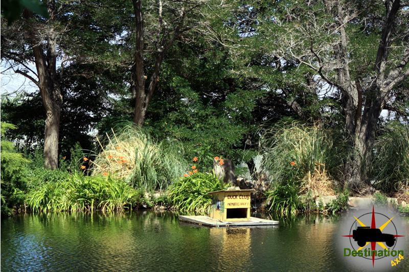 Mount Whitney Fish Hatchery Display Pond