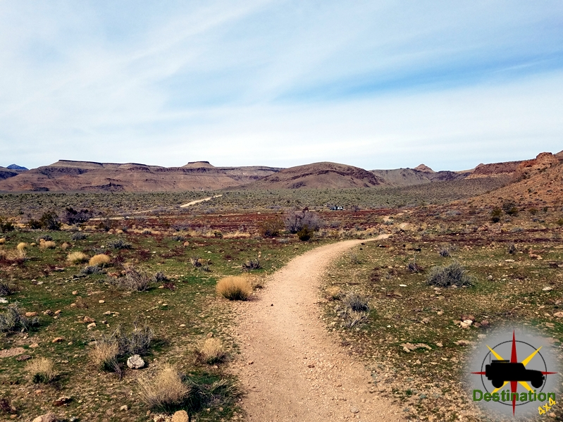 The Ring Trail is a short fun little hike in the Mojave National Preserve.