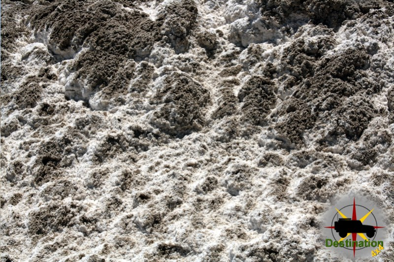 A close up photograph of the sode lake bed.