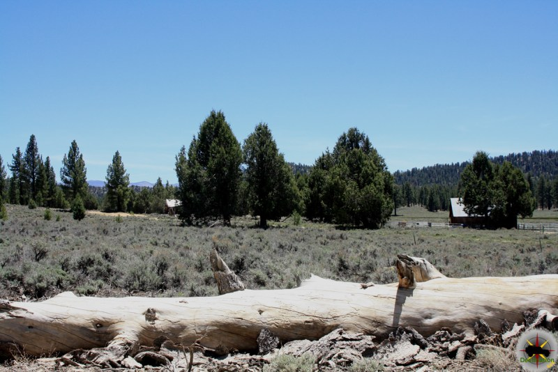 Holcomb Valley Road 3N14 takes you through scenic Holcomb Valley