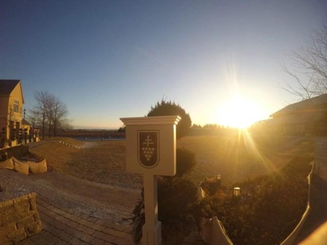 Road Trip to Niagara Falls - Sunset over Peller Estates Vineyards
