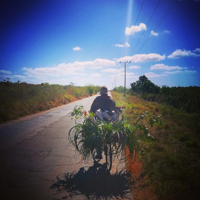 Destination Addict - Making friends with a local farmer & his dog on the road from Varadero to Cárdenas, Cuba