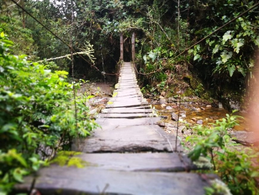 Destination Addict - One of the many rickety bridges to cross on the Cocora Valley trek, Salento, Colombia