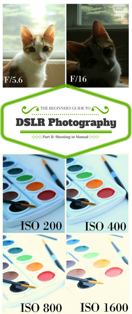 the beginners guide to dslr photography shooting in