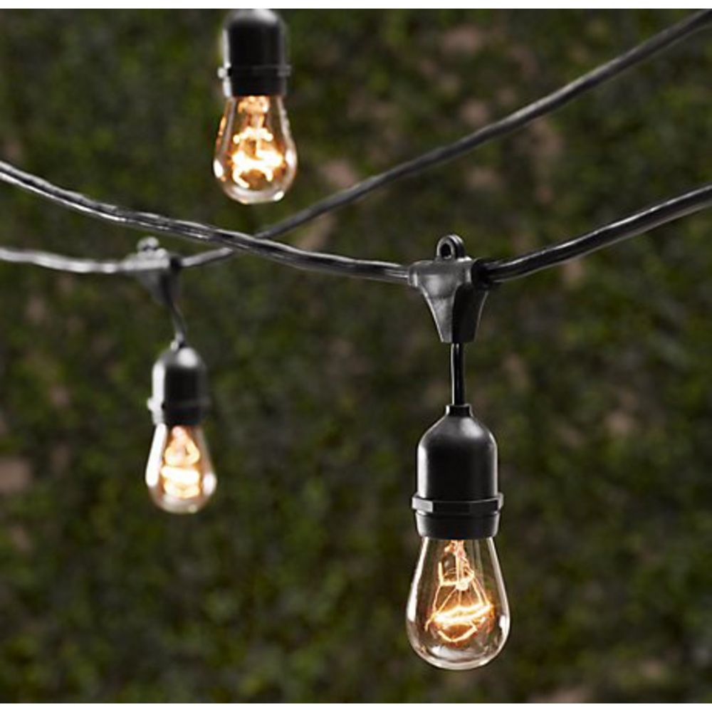 Landscape Light Bulbs