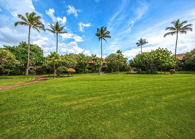 Tropical Koa Resort On Maui