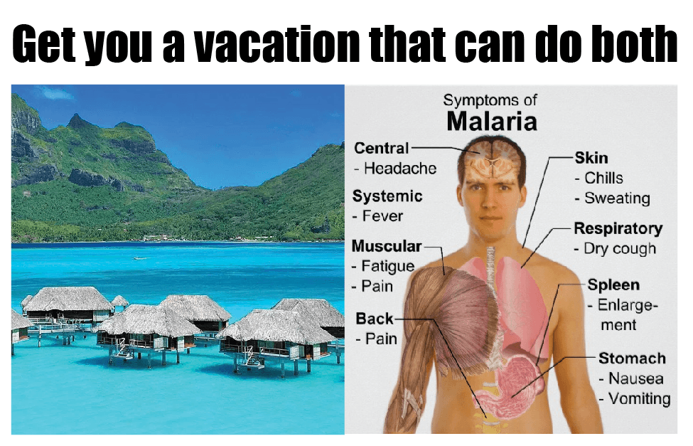 10 Travel Memes That Will Make You Want To Stay Home Destination Tips