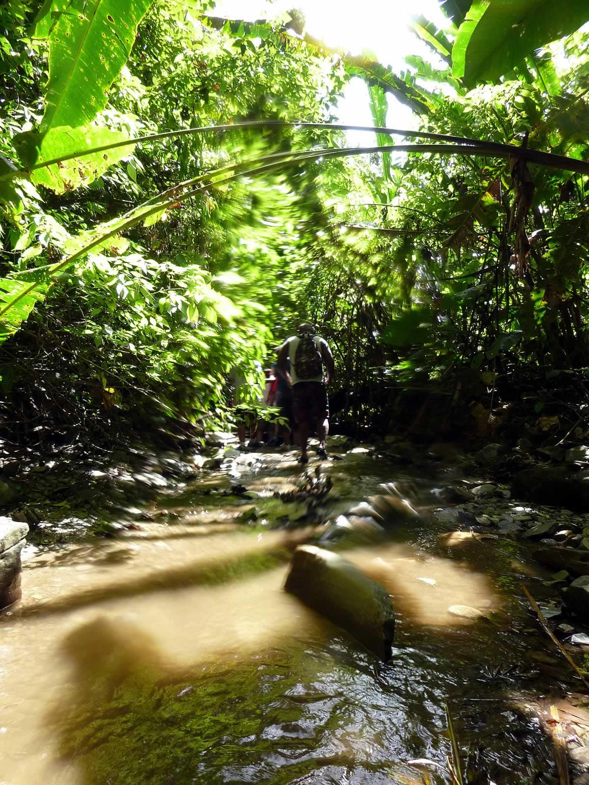 Covigne River Gorge Destination Trinidad and Tobago