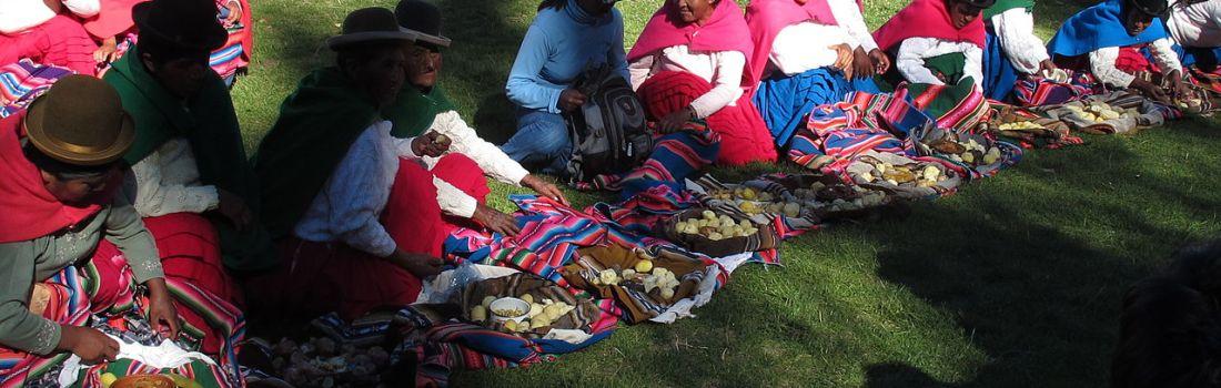 Piața vrăjitoarelor din La Paz, Bolivia
