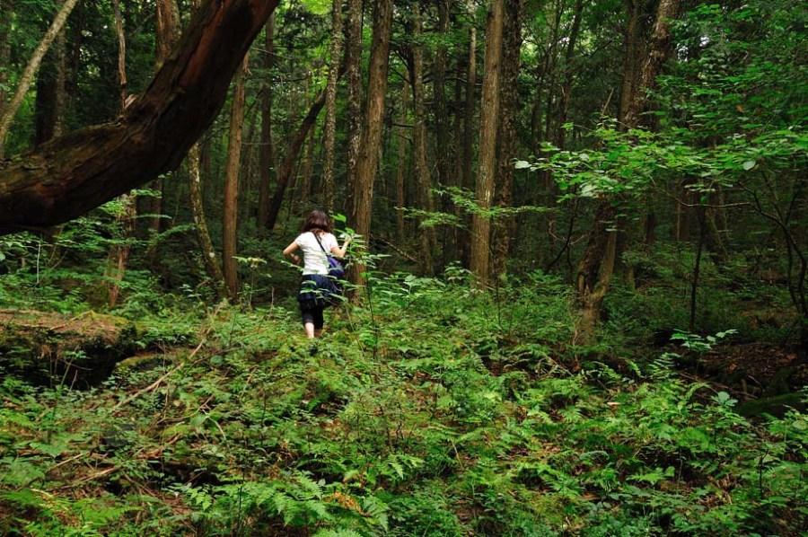 Aokiaghara, pădurea morţii